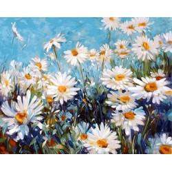 Malování podle čísel Kopretiny M1005 Gaira - 1