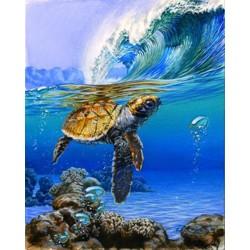 Malování podle čísel Mořská želva M991468